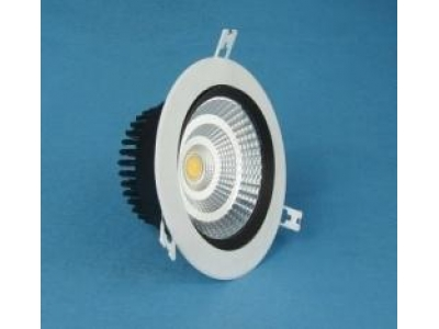 Cree / Bridgelux 30W / 40W LED Downlight